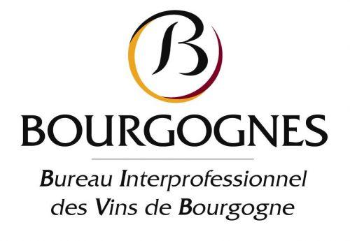 logo bivb